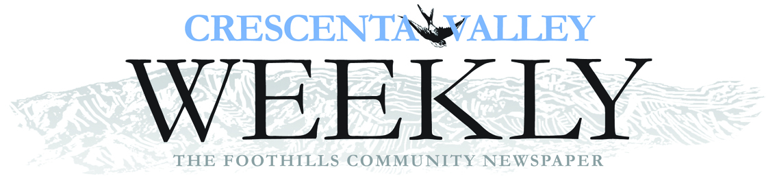 CV WEEKLY HEADER 4C LOGO JPEG