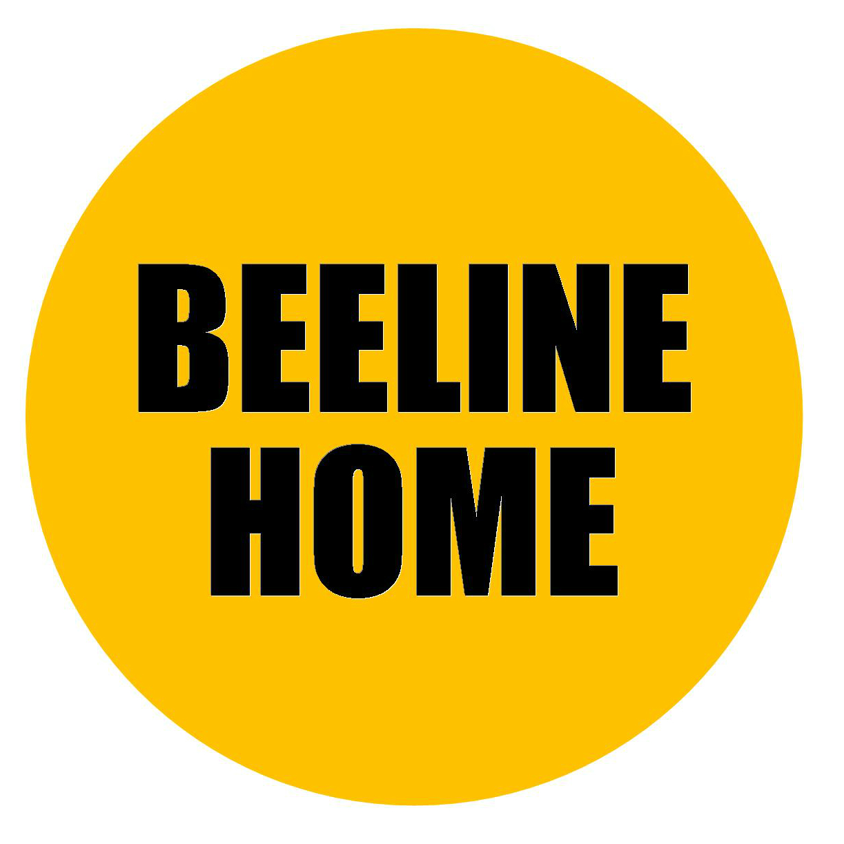 Icon Beeline Home v04