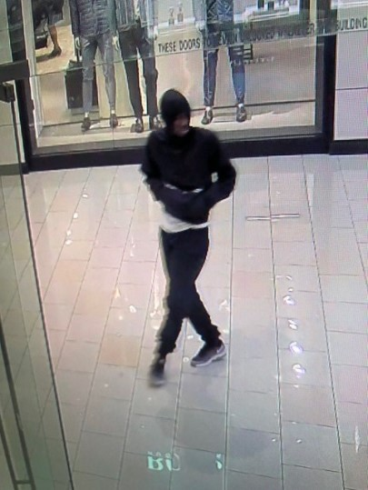 Unk suspect 2 Glendale Galleria Attempt Robbery