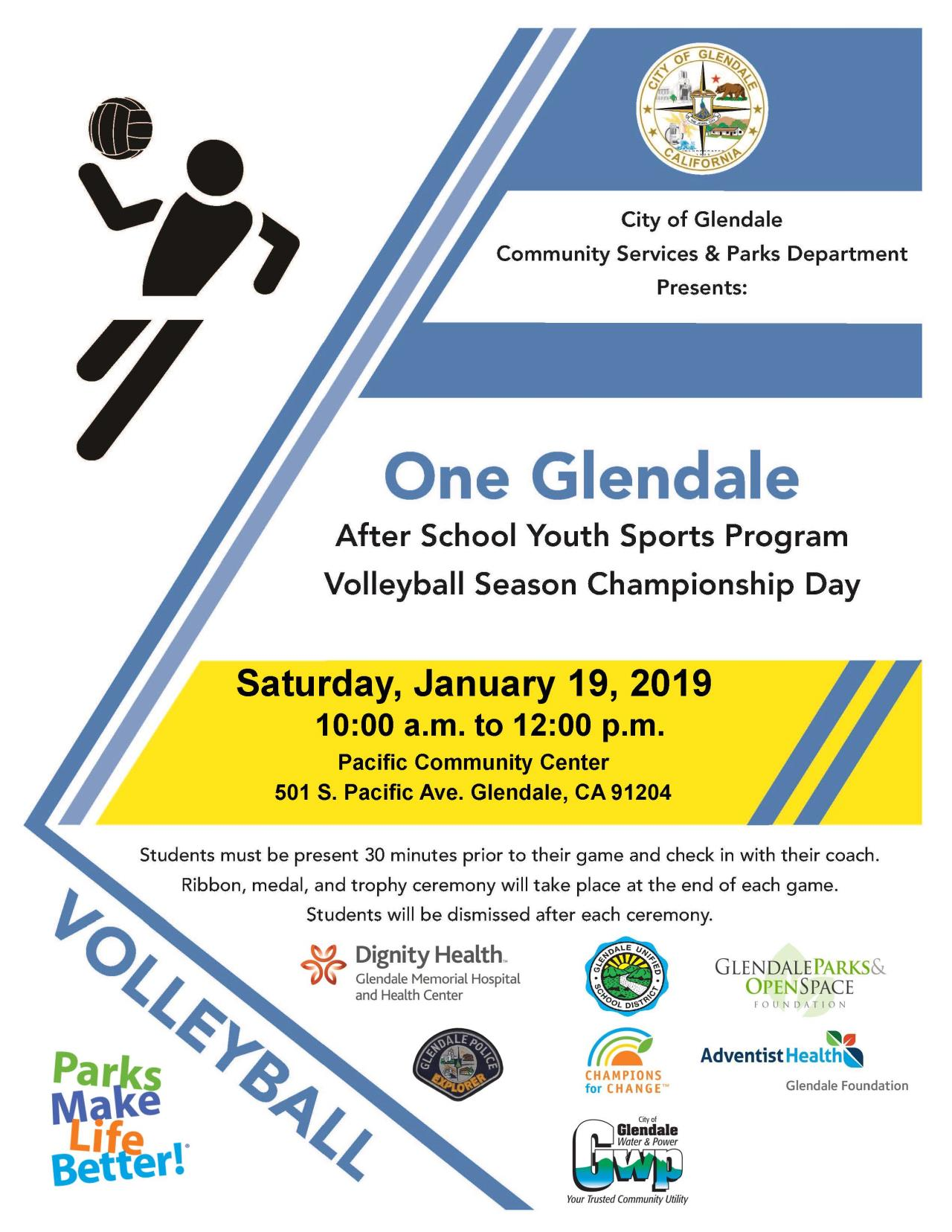 Volleyball Champ flyer (3)