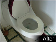 toilet after resolution