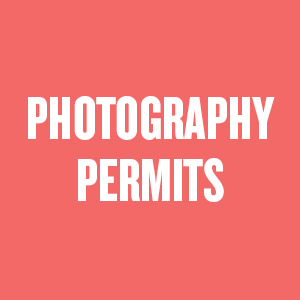 PHOTOGRAPHY PERMITS RUBY GRAPEFRUIT