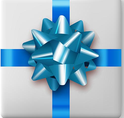 Present Blue Bow